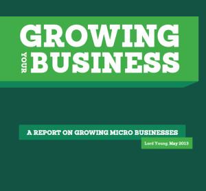 growth-vouchers